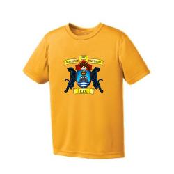 Gold Youth Short Sleeve Eurospun Performance T-Shirt Center